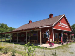 Photo of 1706 State Route 52, Liberty, NY 12754 (MLS # 4829333)