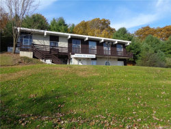Photo of 271 Lake Louise Marie Road, Rock Hill, NY 12775 (MLS # 4847436)