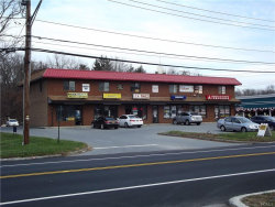 Photo of 562 State Route 17m, Monroe, NY 10950 (MLS # 4851767)