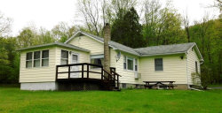 Photo of 50 Old Long Eddy Road, Hankins, NY 12741 (MLS # 4220026)