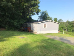 Photo of 17 Stern Scenic Drive, Middletown, NY 10940 (MLS # 4945518)