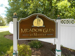 Photo of 16 Webster Court, Monroe, NY 10950 (MLS # 4953977)