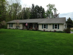 Photo of 2520 East South Range Rd, New Springfield, OH 44443 (MLS # 3613153)
