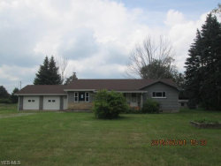 Photo of 2874 East South Range Rd, New Springfield, OH 44443 (MLS # 3727964)