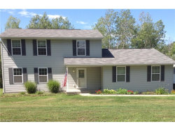 Photo of 5520 Arrel Smith Rd, Lowellville, OH 44436 (MLS # 3839351)