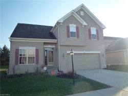 Photo of 3052 Landing Ln, Reminderville, OH 44202 (MLS # 3880287)