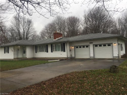 Photo of 9781 Parkman Rd, Windham, OH 44288 (MLS # 3882948)