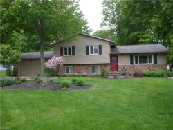 Photo of 442 Lynden Dr, Highland Heights, OH 44143 (MLS # 3902442)