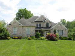 Photo of 8464 Cliffview Dr, Macedonia, OH 44056 (MLS # 3904394)
