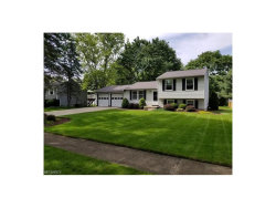Photo of 377 Michaels Dr, Kent, OH 44240 (MLS # 3910304)