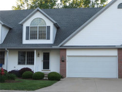 Photo of 371 Northcoast Point Dr, Eastlake, OH 44095 (MLS # 3910957)