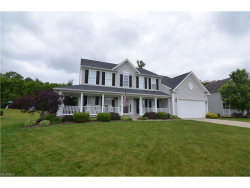 Photo of 4486 Pleasant Lakes Dr, Brimfield, OH 44240 (MLS # 3911604)