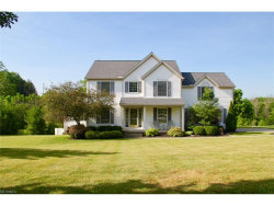 Photo of 1260 Meadow Woods Dr, Macedonia, OH 44056 (MLS # 3914418)