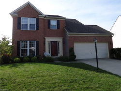 Photo of 10481 Kerwick Ct, Reminderville, OH 44202 (MLS # 3918609)