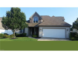 Photo of 380 White Spruce Dr, Macedonia, OH 44056 (MLS # 3918649)