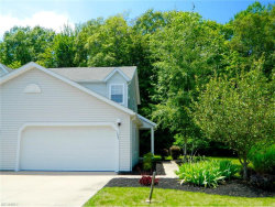 Photo of 1628 Maple View Ct, Streetsboro, OH 44241 (MLS # 3924059)