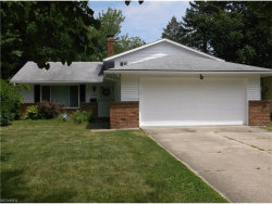 Photo of 6569 Arbordale Ave, Solon, OH 44139 (MLS # 3924677)