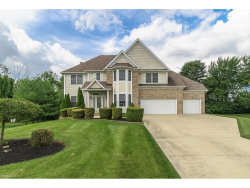 Photo of 6620 Andre Ln, Solon, OH 44139 (MLS # 3924996)