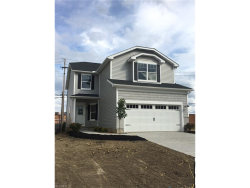 Photo of 1517 Woodrow Ave, Mayfield Heights, OH 44124 (MLS # 3929113)