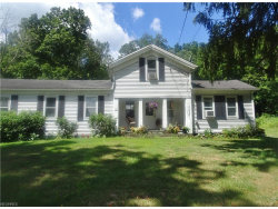 Photo of 11037 State Route 44, Mantua, OH 44255 (MLS # 3929825)