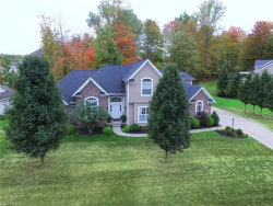 Photo of 316 Jade Blvd, Streetsboro, OH 44241 (MLS # 3931196)