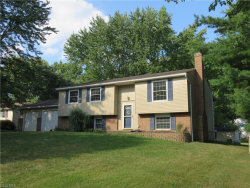 Photo of 4403 Smokerise Dr, Stow, OH 44224 (MLS # 3933011)