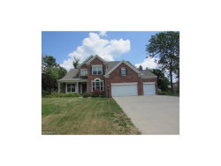 Photo of 7915 Ridgetop Dr, Twinsburg, OH 44087 (MLS # 3933019)