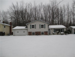 Photo of 6534 Mentor Park Blvd, Mentor, OH 44060 (MLS # 3933538)