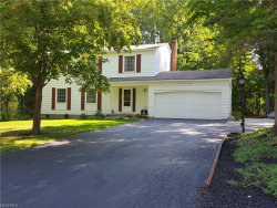 Photo of 7781 Skylineview Dr, Mentor, OH 44060 (MLS # 3933921)