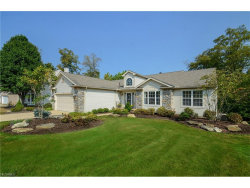 Photo of 10298 Andover Dr, Twinsburg, OH 44087 (MLS # 3944101)