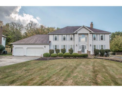 Photo of 580 Williamsburg Dr, Highland Heights, OH 44143 (MLS # 3944297)