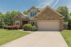 Photo of 6697 Brandamore Ct, Solon, OH 44139 (MLS # 3945564)