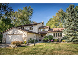 Photo of 6501 Woodhawk Dr, Mayfield Heights, OH 44124 (MLS # 3946619)