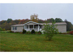 Photo of 8979 State Route 700, Ravenna, OH 44266 (MLS # 3947070)