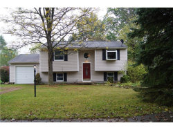 Photo of 1041 Kevin Dr, Kent, OH 44240 (MLS # 3947380)
