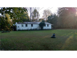 Photo of 12461 State Route 44, Mantua, OH 44255 (MLS # 3949236)