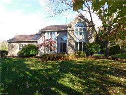 Photo of 363 Miner Rd, Highland Heights, OH 44143 (MLS # 3951219)