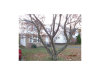 Photo of 1341 Argonne Rd, South Euclid, OH 44121 (MLS # 3957857)