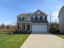 Photo of 10186 Colton Ave, Concord, OH 44077 (MLS # 3958238)