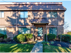 Photo of 7050 Chillicothe Rd, Unit D-1, Mentor, OH 44060 (MLS # 3960118)