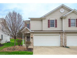 Photo of 9066 Arden Dr, Mentor, OH 44060 (MLS # 3960499)