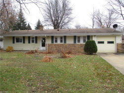 Photo of 8498 Hallnorth Dr, Mentor, OH 44060 (MLS # 3960563)