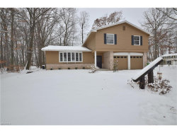 Photo of 4210 Alicia Trl, Stow, OH 44224 (MLS # 3962383)