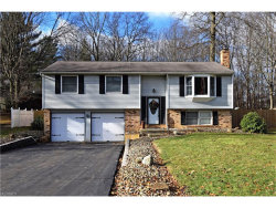 Photo of 393 Stahl Ave, Cortland, OH 44410 (MLS # 3962761)