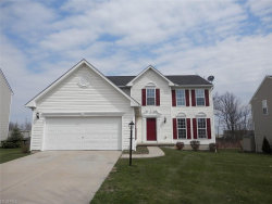 Photo of 1799 Curry Ln, Twinsburg, OH 44087 (MLS # 3963494)