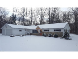 Photo of 8317 Chagrin Rd, Bainbridge, OH 44023 (MLS # 3963520)