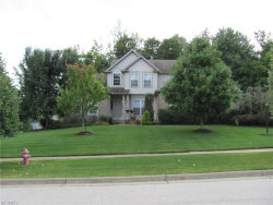 Photo of 1704 Dunlap Dr, Streetsboro, OH 44241 (MLS # 3964206)