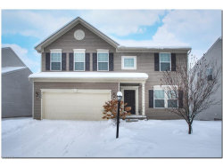 Photo of 3256 Fenmore Ln, Reminderville, OH 44202 (MLS # 3964248)