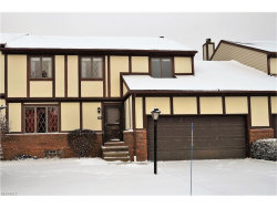 Photo of 55 Picadilly Ct, Kent, OH 44240 (MLS # 3964738)