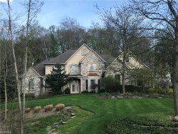 Photo of 16405 Majestic Oaks Dr, Chagrin Falls, OH 44023 (MLS # 3965214)